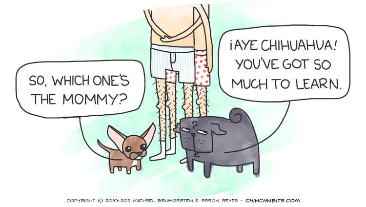 Mommy Queerest, chihuahua, dog, funny, gays, pug