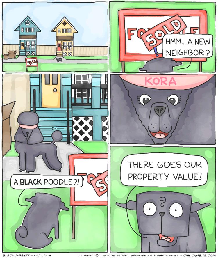 Black Market, dog, funny, poodle, pug